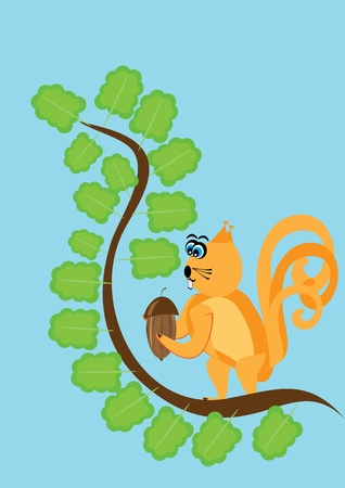 The wild squirrel in solar weather tries to get a wood nut