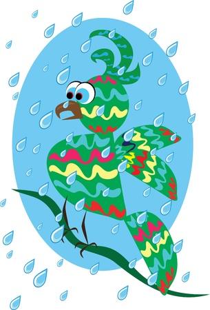 guacamaya caricatura: Papagayo tropical rid�culo en el fondo aislado