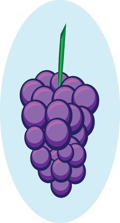 wine register: Abstract dark blue grapes on isolated background. Illustration Illustration