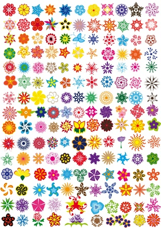 dingbats: set of flowers . Illustration
