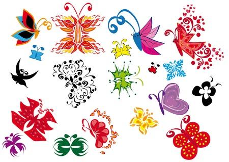 illustrate: set of butterfly. Illustration