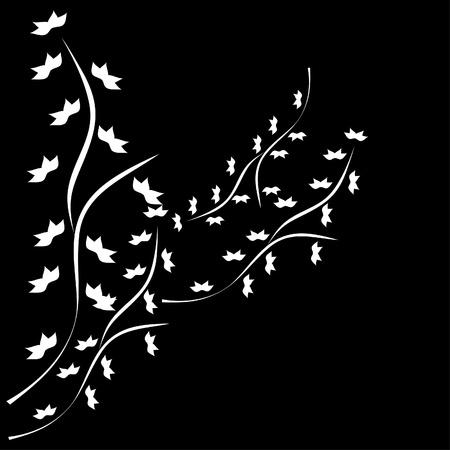Frame with ornate white plant on black back . Illustration. Stock Vector - 10890139