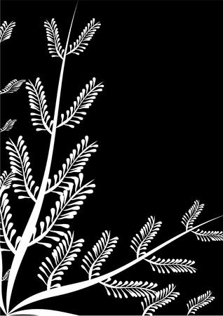 Frame with fern black. Illustration. Vector