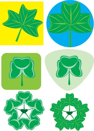Clover set on the isolated background. illustration Stock Vector - 10890151