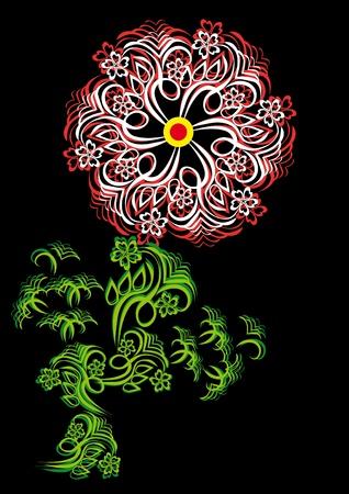 conflagration: flower on isolated background.. Illustration. Illustration