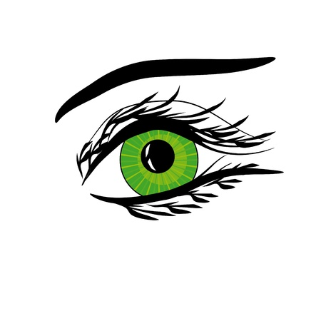 women face stare: Beautiful female green eye.Vector illustration