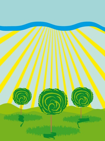 Trees, sun and grass. vector illustration Stock Vector - 12436566