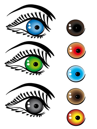 set of beautiful female eyes.Vector illustration Vector