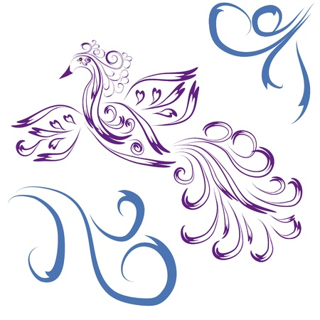 Decorative paradise bird on isolated background Vector