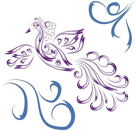 paloma caricatura: El para�so de aves decorativas en el fondo aislado