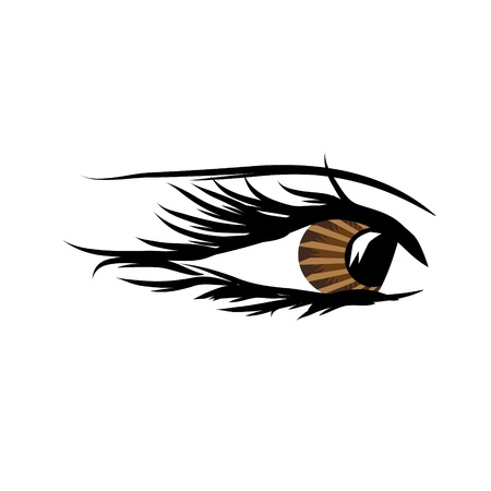 Beautiful female eye.Vector illustration Vector