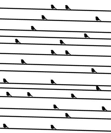birdies on a wire. Vectorial black-and-white background Stock Vector - 15089466