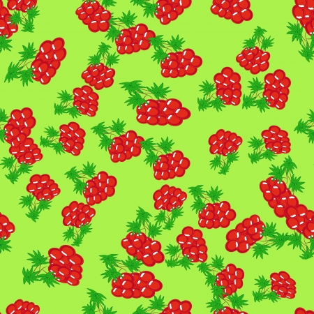 seamless with rowanberries Vector