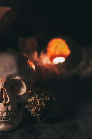 Human scull with candles and dried flowers in the dark