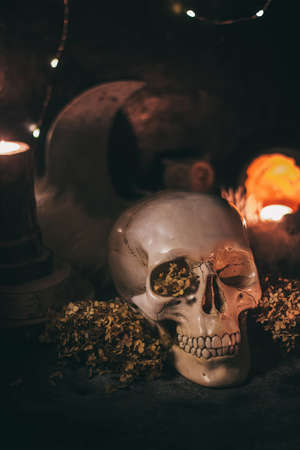 Occult mystic ritual halloween witchcraft scene - human scull, candles, dried flowers, moon and owl