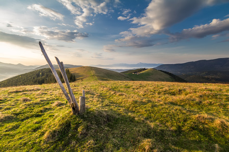 Thether post on Carpathian pasture at sunrise