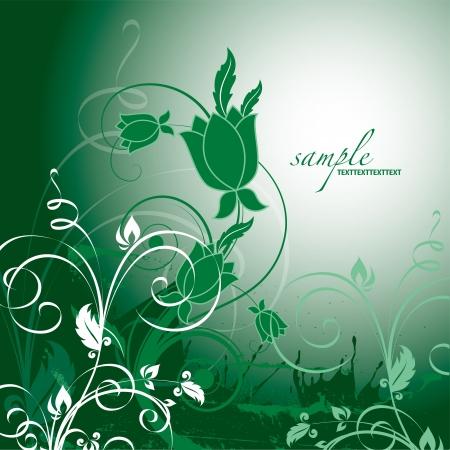 floral swirls: Floral Background  Vector Illustration