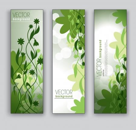 lineas verticales: Banners vector Fondos Abstractos tema floral