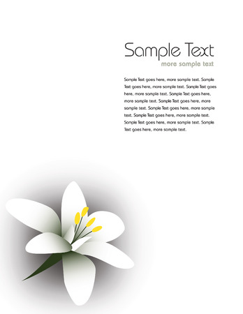 jasmine flower: arabian jasmine, jasminum sambac, flower, jasmine tea flower.