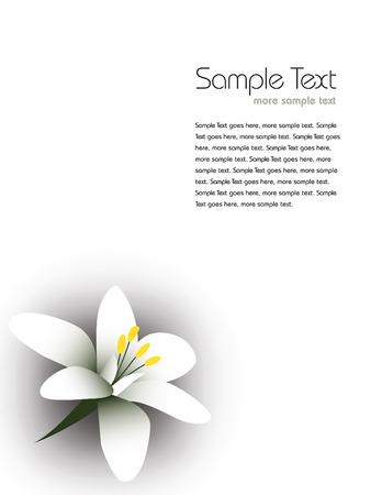 arabische Jasmin, Arabischer Jasmin, Blume, Jasmin-Tee Blume. Vektorgrafik