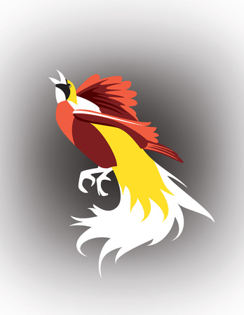 Cendrawasih, natural beautifully colored Bird of Paradise, exotic plumage