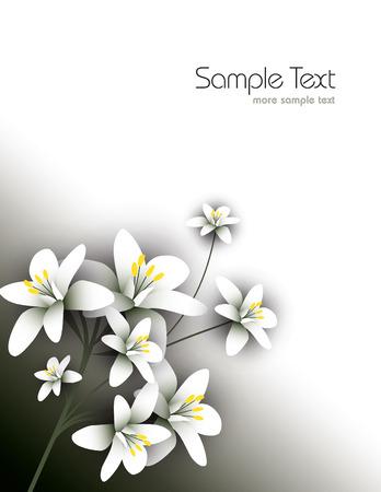 Arabian jasmine, jasminum sambac, flower, jasmine tea flower. 向量圖像