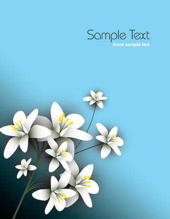 Arabian jasmine, jasminum sambac, flower, jasmine tea flower. Illustration