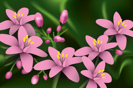 Pink Flowers on green background.