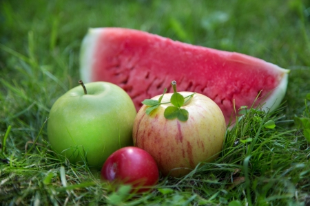 Apples with watermelon slice photo