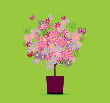 beautiful tree with small color flowers