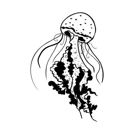 Vector painting jellyfish. Medusa Illustration isolated on white background, element tattoo design, cartoon, doodle.