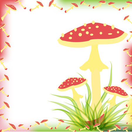 A postcard with a drawing of a fly agaric. Place for the text. Magic mushrooms  . Flat style for web vector illustration Reklamní fotografie - 110007493