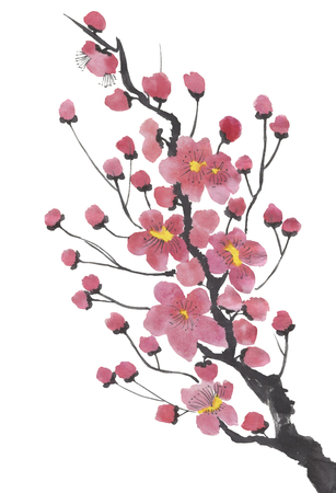 A branch of a blossoming sakura. Pink and red stylized flowers for me and wild cherry. Watercolor sum ink, go go hua, u-sin. Oriental traditional painting. Banco de Imagens - 122062088