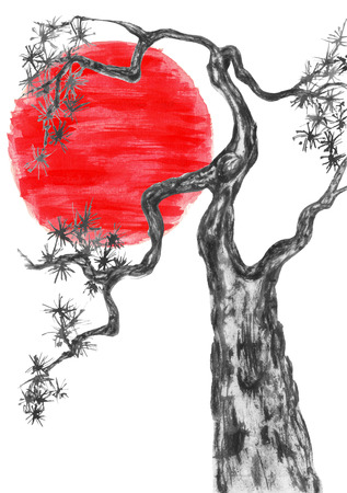Chinese pine and red sun. Japanese watercolor. Indian ink illustration of tree in style sumi-e, go-hua,  u-sin for tattoo. Oriental traditional painting.  Isolated on the white background.