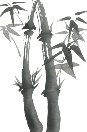 Bamboo branches with leaves. Nature. Japan.  Watercolor and ink illustration  in style sumi-e, go-hua,  u-sin. Oriental traditional painting.