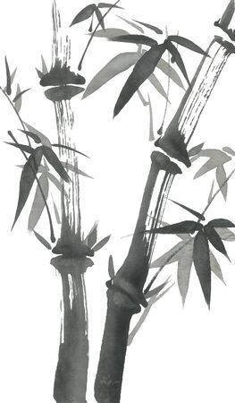 Bamboo branches with leaves. Nature. Japan. Watercolor and ink illustration style sumi-e, go-hua, u-sin. Oriental traditional painting.