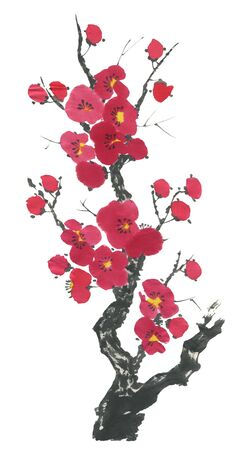 A branch of a blossoming sakura. Pink and red stylized flowers for me and wild cherry. Watercolor sum ink, go go hua, u-sin. Oriental traditional painting.