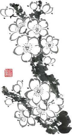 A branch of a blossoming sakura. Mead and wild cherry. Watercolor sum ink-on, go-hua, u-sin. Oriental traditional painting.
