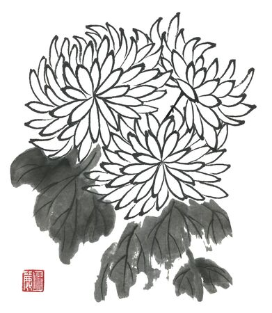 Chrysanthemum as a symbol of Japan and China. Contour flowers and leaves. Traditional oriental ink painting sumi-e, u-sin, go-hua. Stylized print with hieroglyphs.
