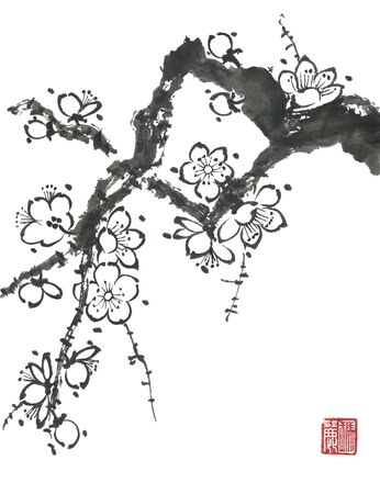 A branch of a blossoming sakura. Contour   flowers of plum mei and  wild cherry .  Oriental traditional illustration of tree in style sumi-e, go-hua,  u-sin. Stylized print with hieroglyphs.