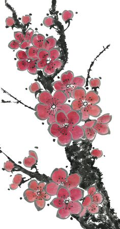 A branch of a blossoming sakura. Pink and red stylized flowers of plum mei and wild cherry. Oriental traditional illustration of tree in style sumi-e, go-hua, u-sin. Imagens