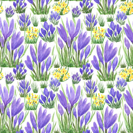 Waterclor colorful seamless pattern of spring flowers. Hand Illustration for creating fabrics, textile, decoupage, wallpapers, print, gift wrapping paper, invitations, textile, scrapbooking. Isolated on white background.
