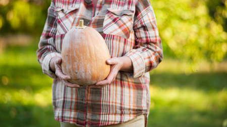 Senior woman in a plaid shirt holds a pumpkin in the garden.Close-up