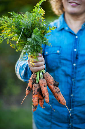 A woman is holding a fresh carrot with tops.