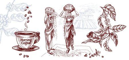 Zbiór kawy , w tym filiżanka kawy i gałązka kawy na tle plantacji . Kobiety suszą ziarno. Ilustracja wektorowa w stylu szkicu.