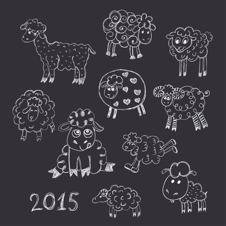 breeding: sheep breeding set of sketches Illustration