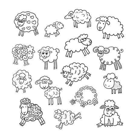 Vector set of sixteen cute sheep