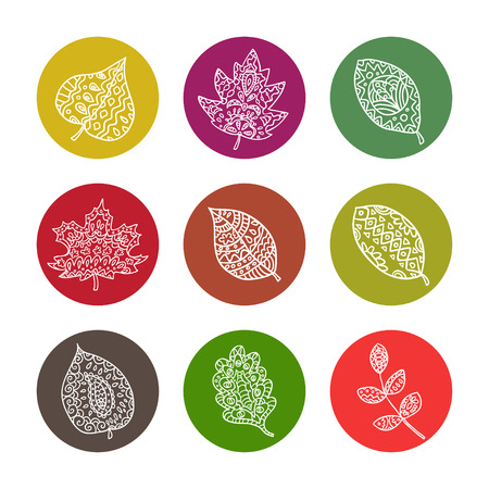 pape: Set of colorful autumn leaves. Vector illustration.