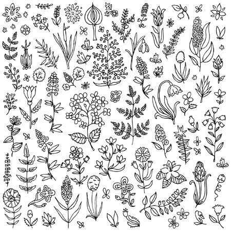 image date: Plants and flowers set Illustration