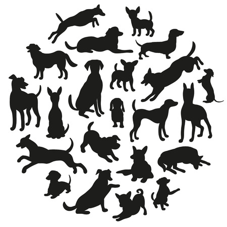 huellas de perro: Conjunto de silueta de perros. Colección de la silueta del vector en círculo. El diseño hermoso del vector.